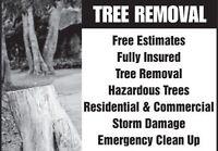 $50 TREE & BUSH REMOVAL SERVICE