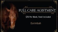 Full Care Agistment Ourimbah Wyong Area Preview
