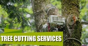 TREE TRIMMING-CUTTING-REMOVAL