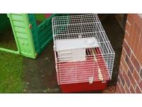 Rabbit cage / hutch