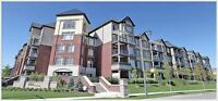 Search Condos In Burlington. View Complete List. Start Here!