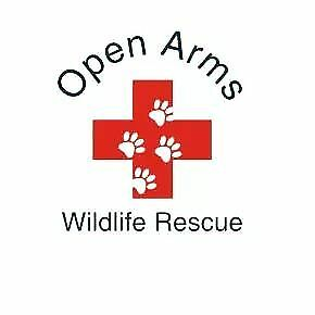 Open Arms Wildlife Rescue
