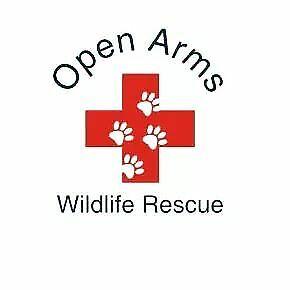Open Arms Wildlife Rescue