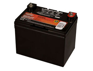 Interstate Sealed Lead Acid (AGM) Deep Cycle Battery - DCM0035