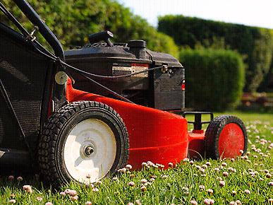 Mowing Gardening landscaping turfing