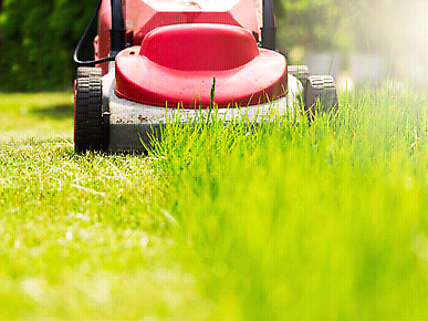 Gardening mowing tree services landscaping turfing