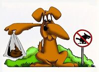 dog poop pick up 1 to 2 hours a month 20 bucks per hour cash