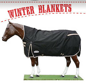 NEW Winter blankets & coolers back in stock!