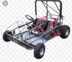 Looking for an off road trail buggy