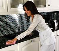 Femme de ménage, Entretien ménager