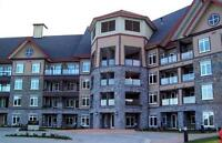 FURNISHED Two Bedroom 2 BA Condo- Bear Mountain- Small Pet Con.
