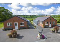 Nant-y-Crabbas Boarding Cattery, Denbigh, North Wales