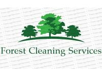 Forest Cleaning Services