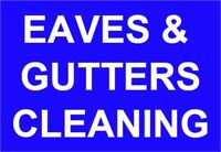 Professional eavestrough cleaning in Oakville - 7 days/week