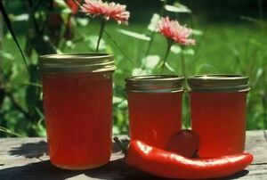 Amazing Red pepper jelly for sale!!!