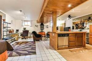 Wonderful Loft Style Lower Level Unit at Queen East