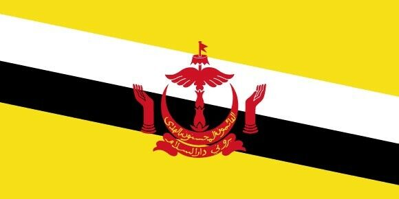 TheBrunei flag,yellow field represents the Sultan of Brunei.  3 X 5 ft, NEW !