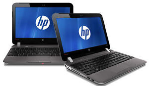HP Netbook 3115m for an Amazing Price! 4GB memory & 250GB HDD