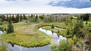 Partial Walkout Backing Blackmud Creek! Edmonton Edmonton Area image 2