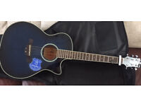 Crafter semi accoustic
