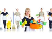 Domestic Cleaners Required