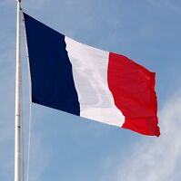 French tutor / French Private Teacher