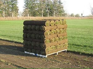 SOD / MULCH / TOPSOIL / TRIPLE MIX DELIVERED TO YOUR DOOR