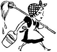 Professional House Cleaning in Bancroft