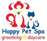 Professional Pet Grooming & Doggy Daycare