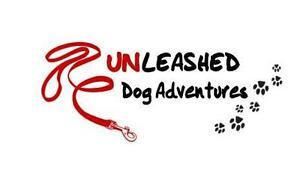Unleashed Dog Adventures-Off-Leash Hiking & Kennel-Free Boarding