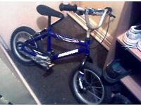 Boys BMX Bike. Magna Dirt Jumper