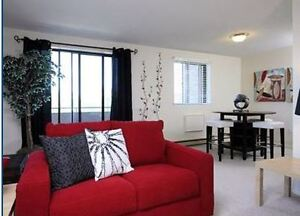 Huge Renovated Two Bedroom Apartment in North London for Jan..