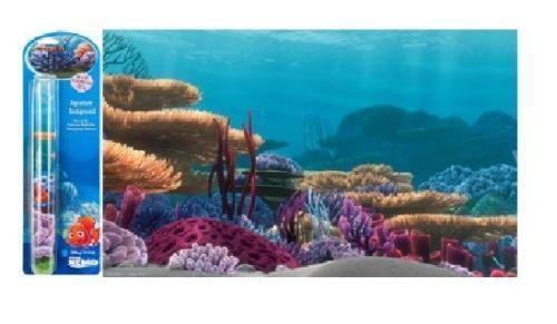 Nemo fish tank ebay for Fish tank full movie