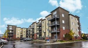 Great suites with amazing incentives at Elizabeth Gardens!! Edmonton Edmonton Area image 2