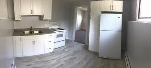 PET FRIENDLY East Side July 1. FULLY Renovated!