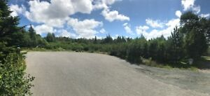 3 Building Lots Available in Seal Cove