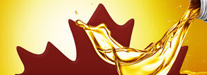 1/2 off Oil Change ONLY $24.95