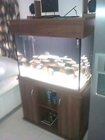 3ft clearseal fish tank 260 litre aquarium