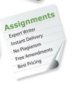 Sandra Hill Academic Essays & Assignments