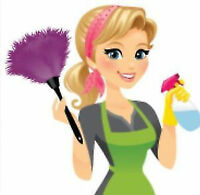 Cleaning Lady available in South Shore