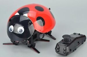 RC Intelligent Lady Bug Robot Kit -- Lots of Ladybug Action Fun