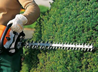 Pruning and Hedge Trimming WCB and fully insured