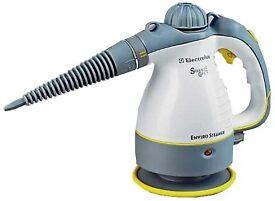 Electrolux Enviro Handheld Steam Cleaner