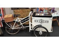 Paisley Ice Cream Bike