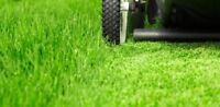 Lawn Services (grass cutting as low as $30) Mississauga.