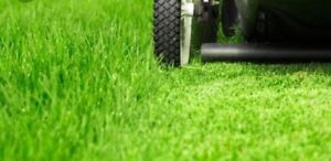 L&S Lawn Services as low as $30.