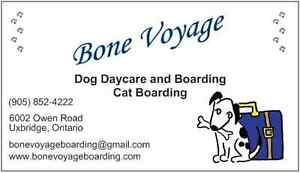 Bone Voyage Boarding and Daycare for Dogs and Cats!