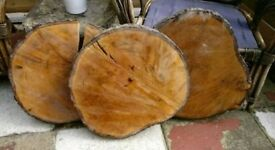 10 Large thick Wood slices Logs £50 ONO -COLLECTION THIS WEEK