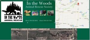 IN THE WOODS ANIMAL RESCUE