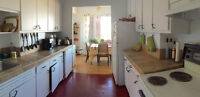 Sublet - August - 1400 av des Pins Ouest Montreal - McGill